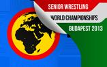 WM 2013 in Budapest